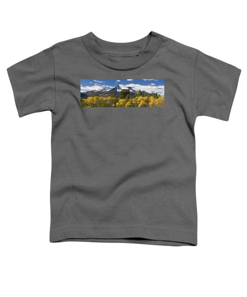 Pilot And Index Toddler T-Shirt