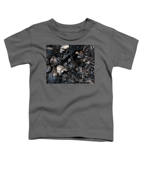 Pine Cone Cinders Toddler T-Shirt