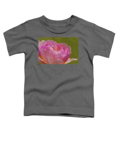 Pink Rose #d3 Toddler T-Shirt
