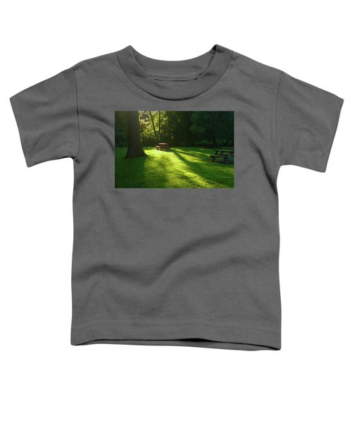 Place Of Honor Toddler T-Shirt