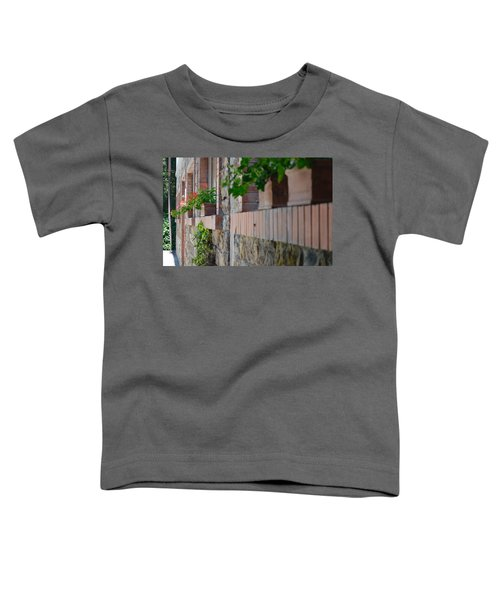 Plants In Windows Toddler T-Shirt