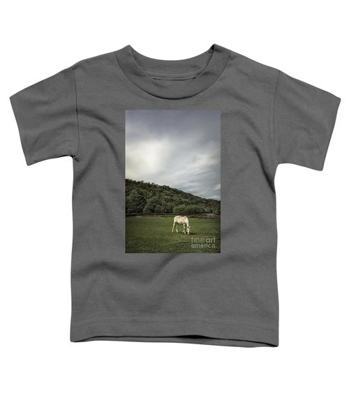 Pleasant Valley Sunday Toddler T-Shirt