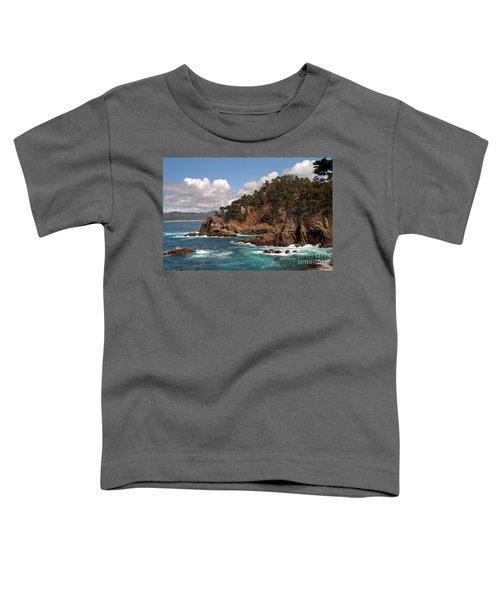 Point Lobos Toddler T-Shirt