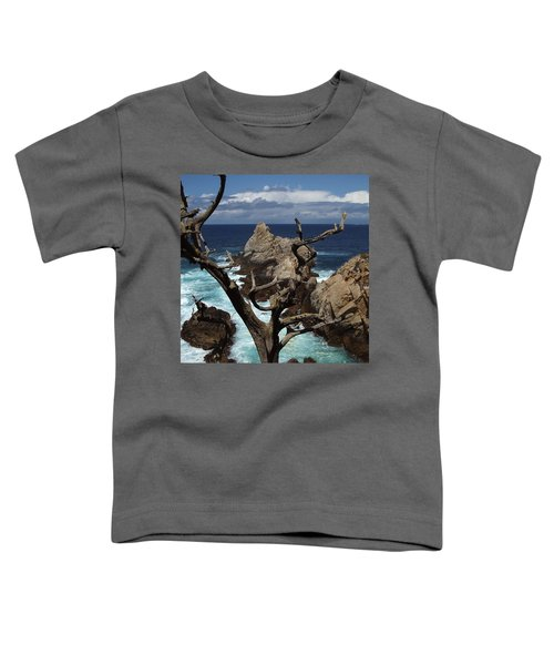 Point Lobos Rocks And Branches Toddler T-Shirt