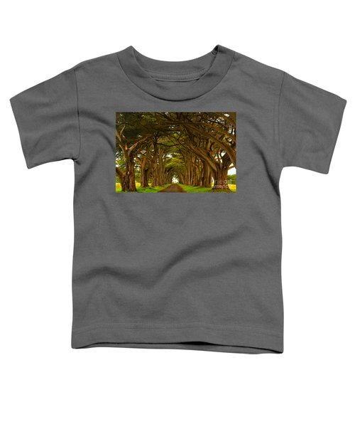 Point Reyes Cypress Tunnel Toddler T-Shirt