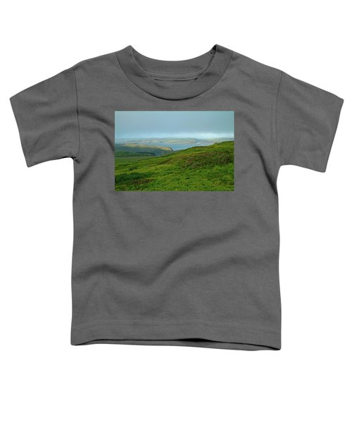 Point Reyes Overlooking Tomales Bay Toddler T-Shirt