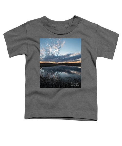 Pond And Sky Reflection3a Toddler T-Shirt