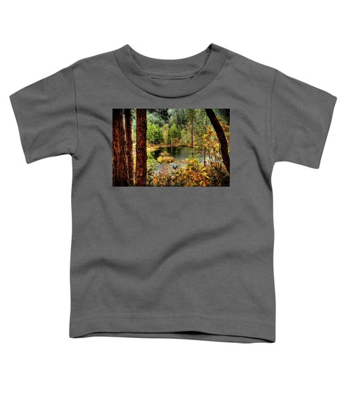 Pond At Golden Or. Toddler T-Shirt