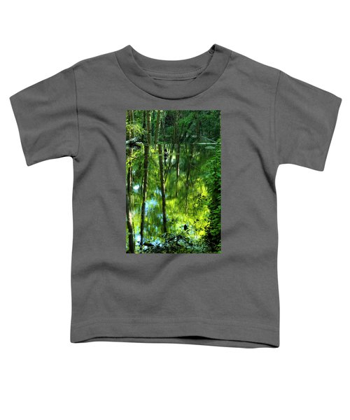 Pond On Gabrielino Trail Toddler T-Shirt