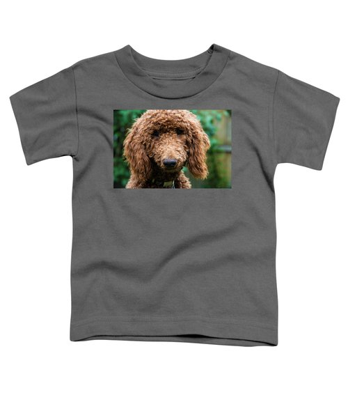 Poodle Pup Toddler T-Shirt