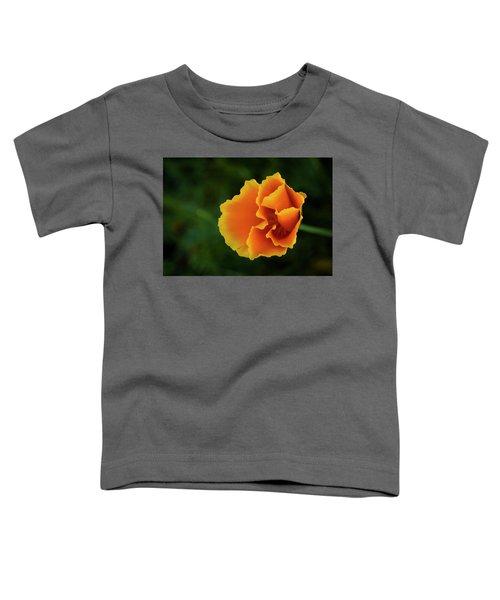 Poppy Orange Toddler T-Shirt