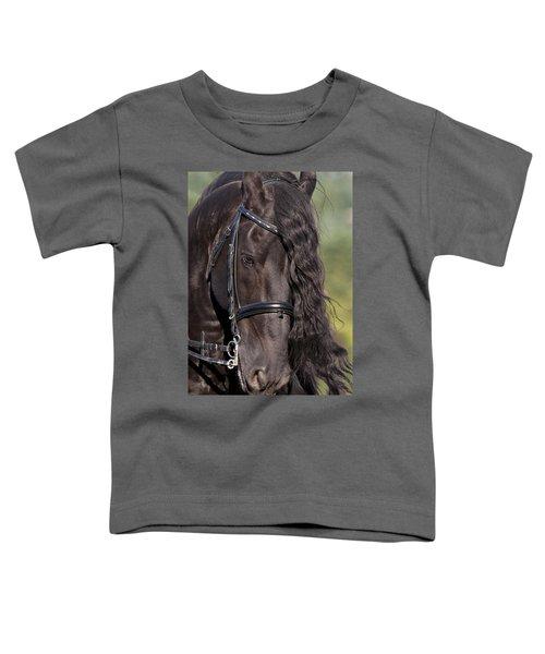 Portrait Of A Friesian Toddler T-Shirt