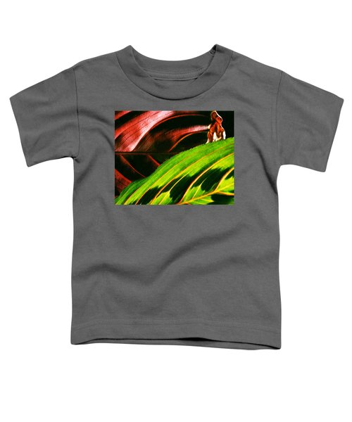 Prayer Plant Passing Toddler T-Shirt
