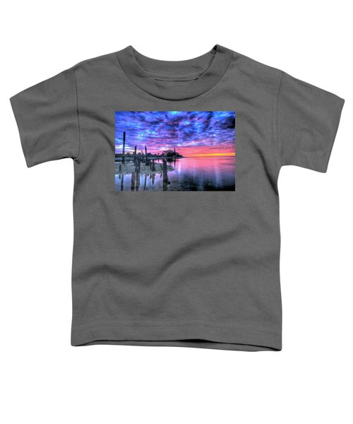 Pre Dawn At St. Marks #1 Toddler T-Shirt