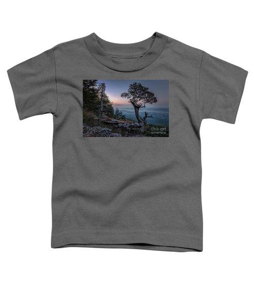 Precarious Toddler T-Shirt