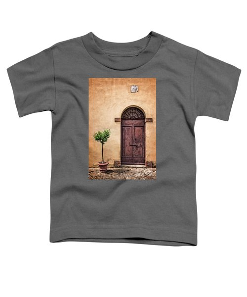Presently In The Past Toddler T-Shirt