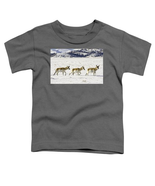 Pronghorns Toddler T-Shirt