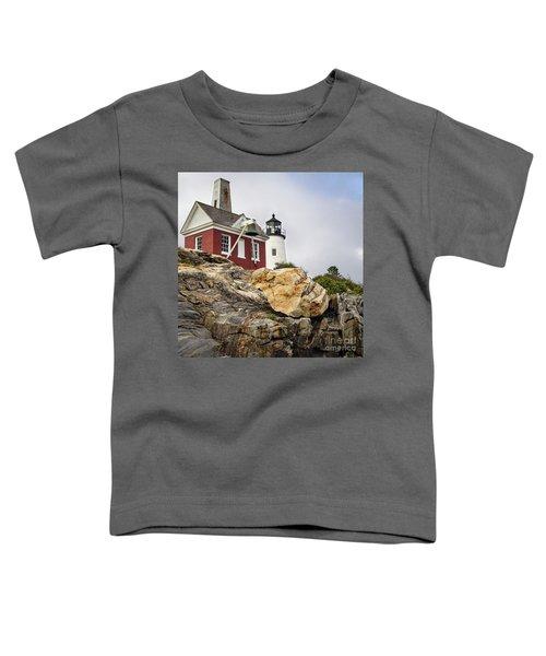 Pumphouse And Tower, Pemaquid Light, Bristol, Maine  -18958 Toddler T-Shirt