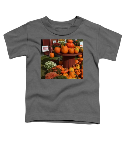 Pumpkin Display Toddler T-Shirt