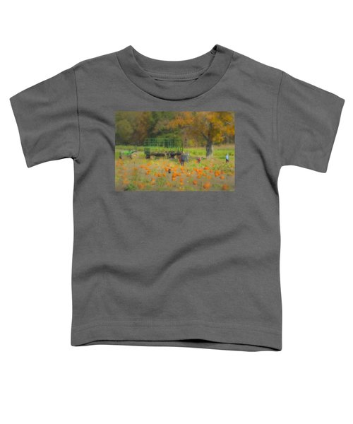 Pumpkins At Langwater Farm Toddler T-Shirt