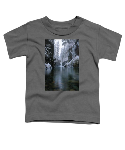 Punch Bowl Winter Toddler T-Shirt