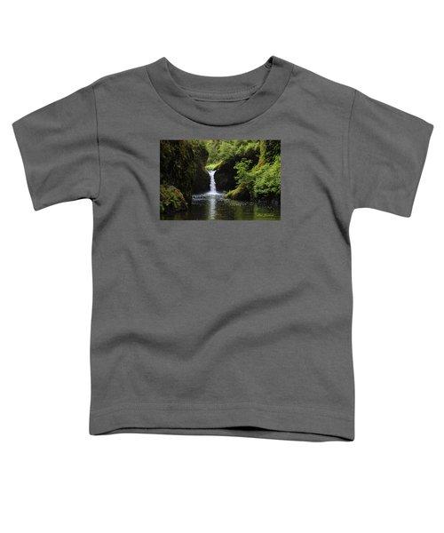 Punchbowl Falls Signed Toddler T-Shirt