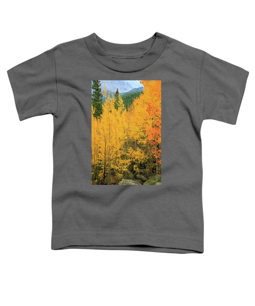 Pure Gold Toddler T-Shirt