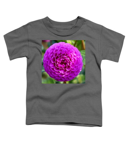 Purple Dahlia Toddler T-Shirt