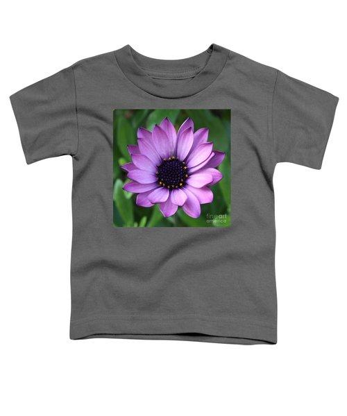 Purple Daisy Square Toddler T-Shirt