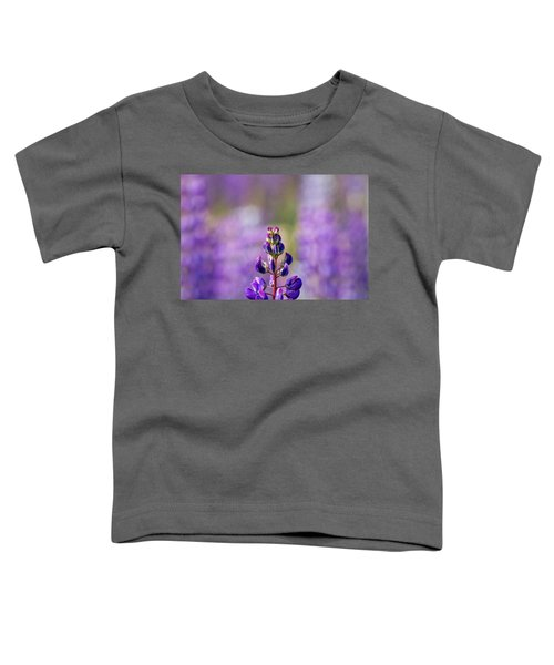 Purple Toddler T-Shirt