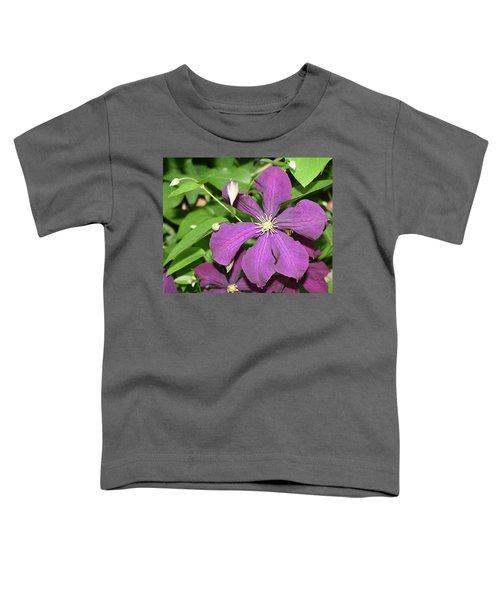 Purple Delite Toddler T-Shirt