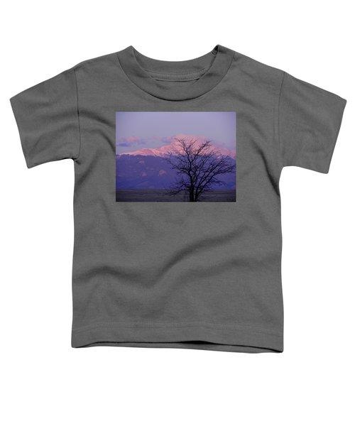 Purple Mountain Majesty Toddler T-Shirt