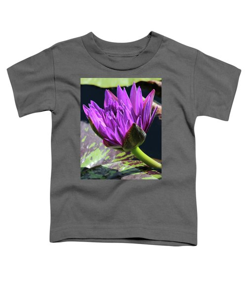 Purple Water Lily Toddler T-Shirt