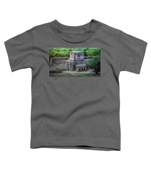 Pyramid View Toddler T-Shirt