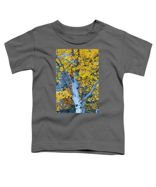 Quaking Aspen Toddler T-Shirt