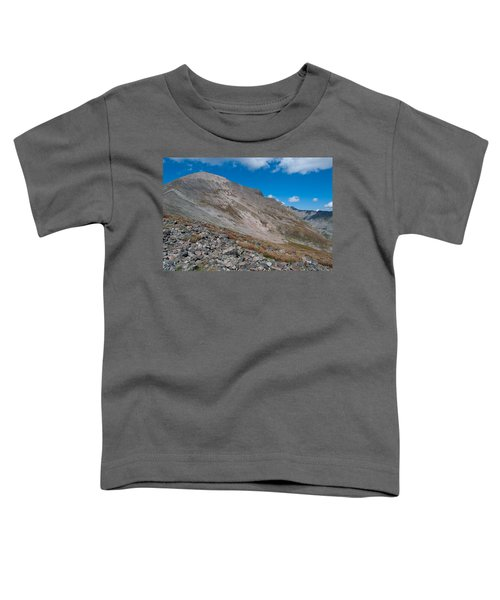 Quandary Peak Toddler T-Shirt