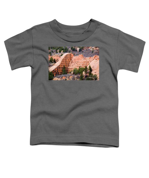 Quarry Closup At Red Rock Canyon Colorado Springs Toddler T-Shirt