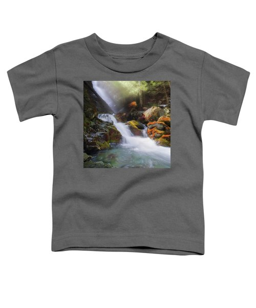 Toddler T-Shirt featuring the photograph Race Brook Falls 2017 Square by Bill Wakeley