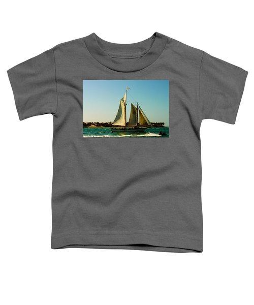 Racing The Wind Toddler T-Shirt