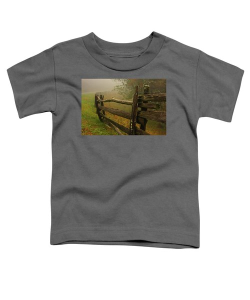 Rails Of Time Toddler T-Shirt
