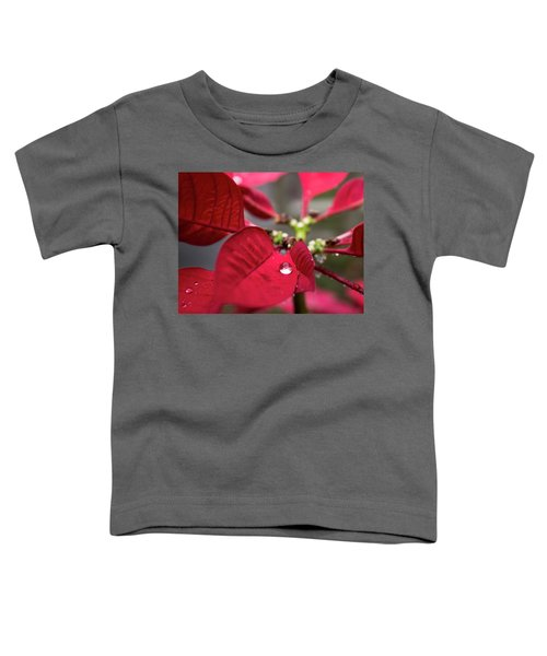 Rain Drop On A Poinsettia  Toddler T-Shirt