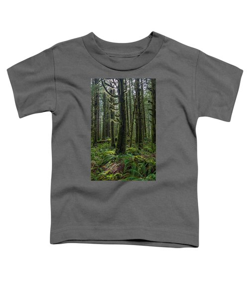 Rain Forest Of Golden Ears Toddler T-Shirt