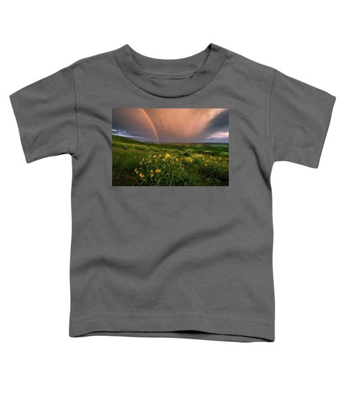 Rainbow At Steptoe Butte Toddler T-Shirt