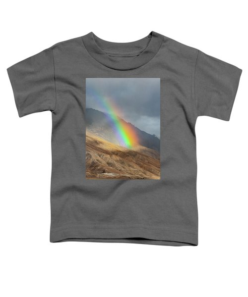 Rainbow, Kaza, 2008 Toddler T-Shirt
