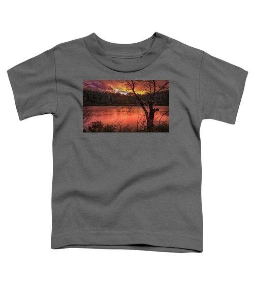 Raindrops On Nullica Toddler T-Shirt