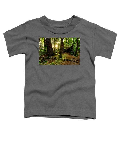 Rainforest Path Toddler T-Shirt by Chad Dutson