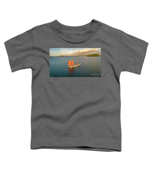 Raising The Sail Toddler T-Shirt