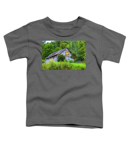 Rays Star Toddler T-Shirt
