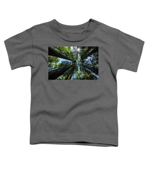 Reaching For The Sun Toddler T-Shirt