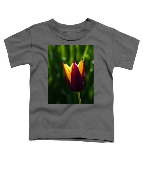 Red And Yellow Tulip Toddler T-Shirt